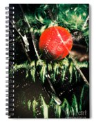 Twisted Evil Clown Portrait Spiral Notebook