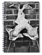 Twisted Fish - Bw Spiral Notebook