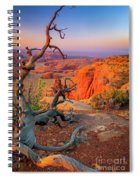 Twisted Remnant Spiral Notebook