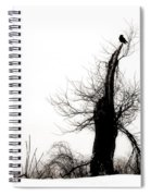 Twisted Tree With Snow Crow Spiral Notebook
