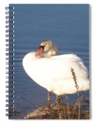Twisted  White Swan Spiral Notebook