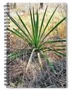 Twisted Yucca Spiral Notebook