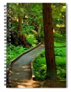 Twisting Path Through The Woods Spiral Notebook