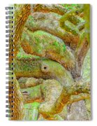 Twists In Time Spiral Notebook