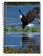 Two American Bald Eagle Touching Down At Low Tide Spiral Notebook