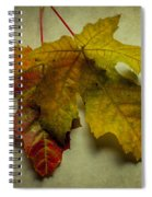 Two Autumn Leaves Spiral Notebook