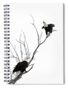 Two Bald Eagles Spiral Notebook