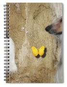 Two Beautiful Afghans Spiral Notebook