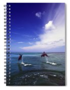 Two Bottlenose Dolphins Spiral Notebook