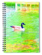 Two Canadian Geese In The Water Spiral Notebook