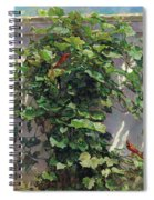 Two Cardinals On The Vine Tree Spiral Notebook