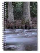 Two Ceders Next To A Mountain Stream Spiral Notebook