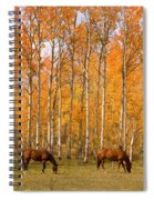 Two Colorado High Country Autumn Horses Spiral Notebook
