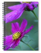 Two Cosmos Spiral Notebook