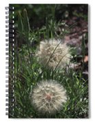Two Dandelions, Spiral Notebook