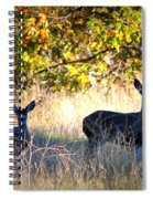 Two Deer In Autumn Meadow Spiral Notebook