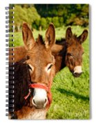 Two Donkeys Spiral Notebook