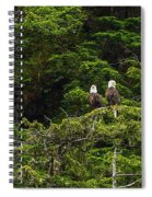 Two Eagles Perched Painterly Spiral Notebook