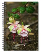 Two Fushia Blossoms Spiral Notebook