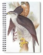 Two Goshawks Spiral Notebook