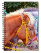 Two Horses Spiral Notebook