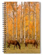 Two Horses Grazing In The Autumn Air Spiral Notebook