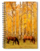 Two Horses In The Autumn Colors Spiral Notebook
