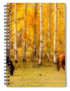 Two Horses In The Colorado Fall Foliage Spiral Notebook