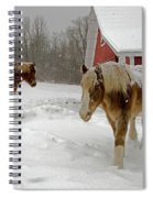 Two Horses In Winter Spiral Notebook