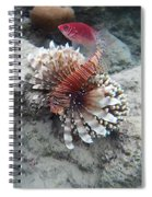 Two In Red Spiral Notebook