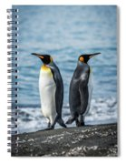 Two King Penguins Facing In Opposite Directions Spiral Notebook