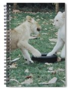 Two Lion Cubs Playing Spiral Notebook