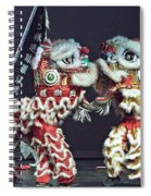 Two Lions Kung Fu Club Spiral Notebook