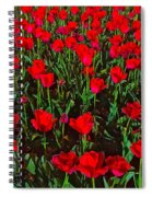 Two Lips Spiral Notebook