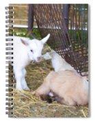 Two Little Goatlings Spiral Notebook
