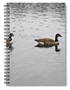 Two Lovely Canadian Geese Spiral Notebook
