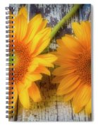 Two Lovely Sunflowers Spiral Notebook