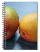Two Mangos Spiral Notebook