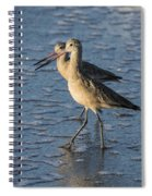 Two Marbled Godwits Spiral Notebook