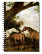 Two Mares And A Foal Spiral Notebook