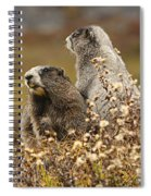Two Marmots Spiral Notebook