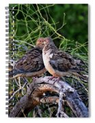 Two Mourning Doves H14 Spiral Notebook