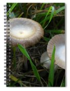 Two Mushrooms In Grass Spiral Notebook