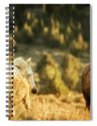 Two Mustangs Post Playtime At The Waterhole Spiral Notebook