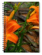 Two Orange Daylilies Spiral Notebook