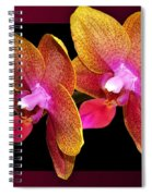 Two Orchids And A Bud Spiral Notebook