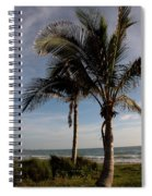 Two Palms And The Gulf Of Mexico Spiral Notebook