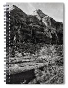 Two Peaks - Bw Spiral Notebook