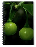Two Peppers Spiral Notebook