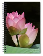 Two Pink Lotus Spiral Notebook